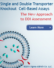 Single and Double Transporter Knockout Cell-Based Assays